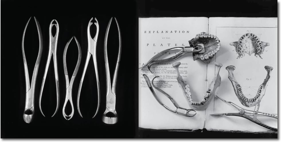 Andrea Baldeck's Bones Books & Bell Jars, Photographs of the Mutter Museum Collection